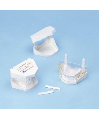 Пластмасови кутии за модел (100 бр.)