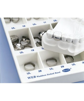 """Orthodontic band """"WEB"""", first molar without tube - 1 pc."""